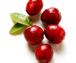 Buah cranberry mampu atasi anyang-anyangan